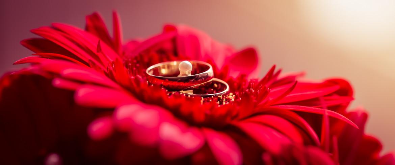 Fotografia ślubna - dodatki ślubne, suknia ślubna