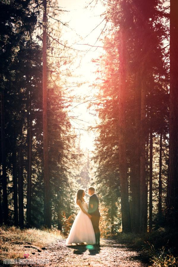 Wspaniała leśna sesja ślubna Jelenia Góra i okolice. Reportaże ślubne w Karkonoszach, zdjęcia narzeczeńskie, zdjęcia rodzinne...