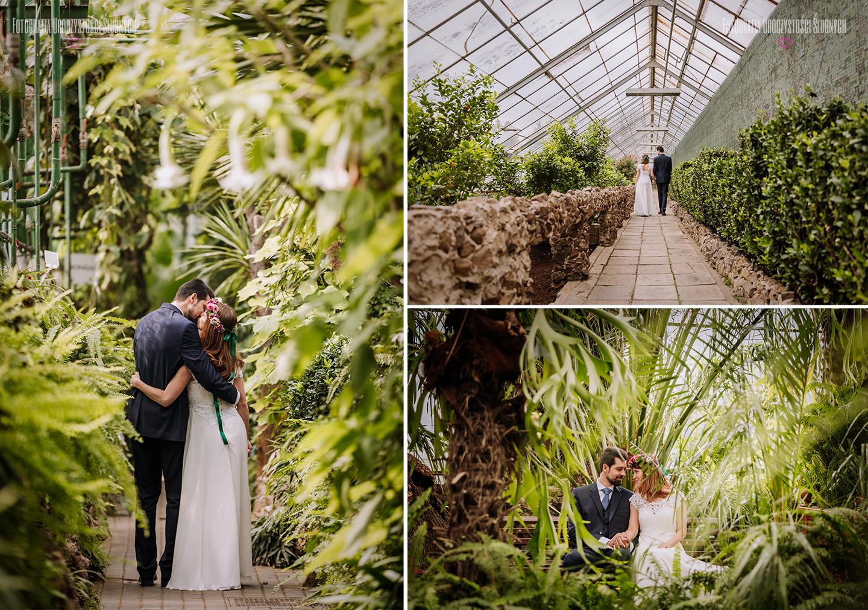 Plener ślubny w Palmiarni w Wałbrzychu - koło Zamku Książ, klimatyczna sesja ślubna w szklarni i w okolicznym parku. Fotografia ślubna Jelenia Góra